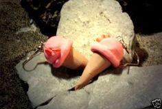 Ohrringe und Ohrstecker im Onlineshop - Verrückte Ohrringe und Schmuck Welt  - Ohrringe Eis Erdbeer Edelstahl Hänger handgemacht Fimo Neuware