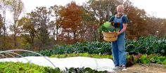 Herb and Plow is a certified organic, naturally grown fruit and vegetable farm with over 50+ varieties. CSAs - Nashville, Knoxville, Crossville and Oak Ridge,TN