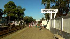 Murió al caer del tren cuando le arrebataron el celular. La víctima fue asaltada cuando se encontraba en una formación ferroviaria de la línea Belgrano Norte, en la estación Carapachay. En un intento de defensa, cayó a las vías y falleció por un furibundo golpe en la cabeza. http://www.diariopopular.com.ar/c175080