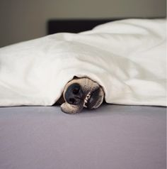 """""""I'm not getting up until I smell breakfast…."""""""