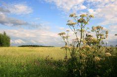 Aknīstes lauku teritorija, Latvia