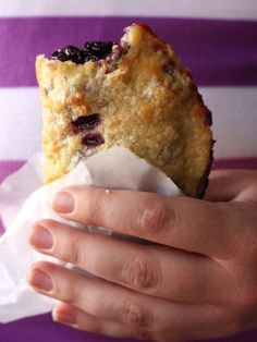 Blueberry Hand Pies (bet it would be good with blackberries or huckleberries too)