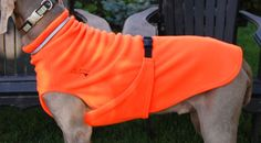 Chilly Dogs - best dog jackets!