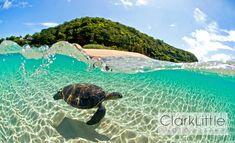 Water Baby By Hawaiian Photographer Clark Little