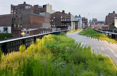 Walk the 1.45 mile-long path along the High Line, one of the city's most interesting urban green spaces. #conradcities