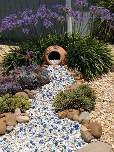 Three years after first posted,  plants have grown and blue rock added to white gravel. An eye catching, low maintenance idea.