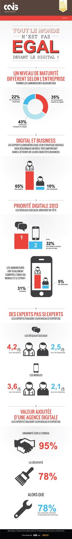Infographie : 35% des annonceurs se considèrent comme experts du digital Digital Web, Digital Trends, Digital Media, Social Networks, Social Media, Interactive Marketing, Social Business, Digital Strategy, Big Data
