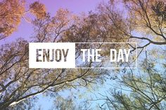 Enjoy the day quote concept trees by Cienpies Design on @creativemarket