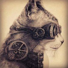 Steam punk cat!