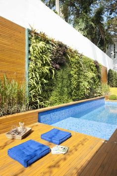 Piscina com jardim vertical