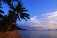 Palm trees and Double Island from Kewarra Beach in Cairns, Australia