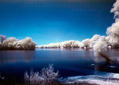 lake in winter,nature park kopacki rit,slavonia,croatia