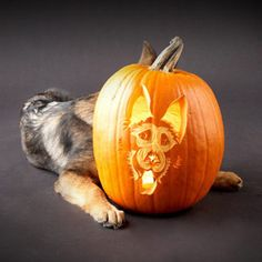 If It's Hip, It's Here: Pumpkin Carving Posts, Inspiration & Links For 2010 Halloween