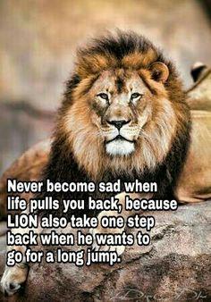 #Wisdom #Courage