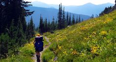 Looking for an awesome Multi-Day Backpacking trip? Think about Wonderland Trail in Washington - one of Backpacker's Best Hikes Ever