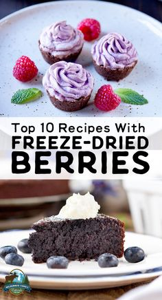 Top 10 Recipes With Freeze-Dried Berries Very often, organic berries can be expensive or difficult to source. That's why we love freeze-dried berries! And you can use them in baked goods, to top granola or yogurt, or even to make jello and jam! Oven Dried Strawberries, Freeze Dried Raspberries, Freeze Dried Fruit, Blueberry Recipes, Strawberry Recipes, Fruit Recipes, Real Food Recipes, Recipes With Fruit Powder, Sweet Recipes