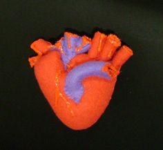 Nnnnneeeeeedddddd!!  https://www.etsy.com/au/listing/49130870/human-heart-plush