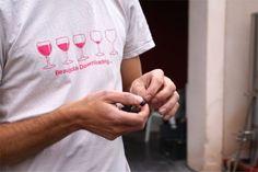 Weekend dans le Beaujolais : 8 expériences à ne pas louper ! - Chouette World - Blog voyage Le Beaujolais, Blog Voyage, Owls, Wine