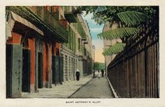 Saint Anthony's Alley, New Orleans, the red of the bricks and the green of the shutters