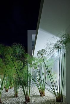 Front Yard Landscaping Enjoy collection garden styles and let us find your thoughts about this garden design ideas.