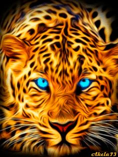 48213410 Diamond Painting - Full Round - Leaopard in 2020 Lion Live Wallpaper, Wild Animal Wallpaper, Live Wallpapers, Big Cats Art, Cat Art, Colorful Animals, Cute Animals, Tiger Artwork, Tier Wallpaper