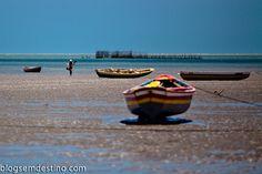 Cajueiro da Praia, Piauí