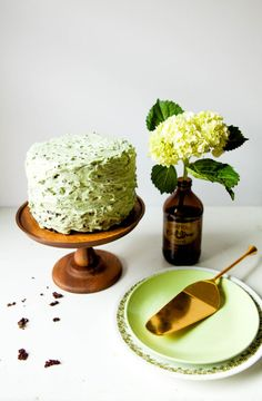 Chocolate Cake with Mint Chip Buttercream | The Baking Bird