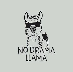 Save the drama for your lama! I love the drama lama