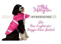 New Englander Doggie Rain Jacket Keep you puppy dry on those walks outside with our newest ran gear for your dogs Keep your favorite four