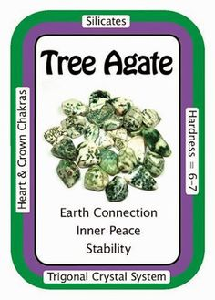 """Card of the Day: Tree Agate, """"I am connected to the natural cycles of life.""""  Tree Agate is deeply connected to nature and can help bring one into contact with devas and other nature spirits when used during meditation.  You can always use the code HCPIN10 to receive 10% off your order  http://www.healingcrystals.com/advanced_search_result.php?dropdown=Search+Products...&keywords=tree  Crystal Cards: http://www.healingcrystals.com/Crystal_Information_Cards___Oracle_Decks_1__2_and_3.html"""