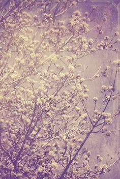 shades of lavender #ghdpastels