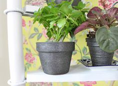 Transform Terra cotta pots with paint