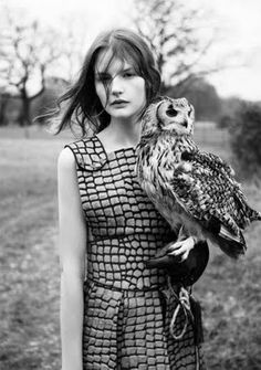 owls and dresses
