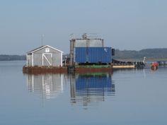 Salmon Weirs Eastport, Maine