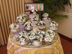 grandmas tea cup collection with her favorite flower...the humble daisy
