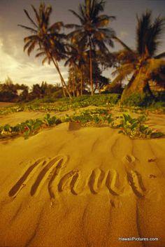 Maui Hawaii USA My favorite place! Maui Travel, Hawaii Vacation, Vacation Trips, Dream Vacations, Vacation Spots, Croatia Travel, Nightlife Travel, Italy Travel, Hawaii Usa
