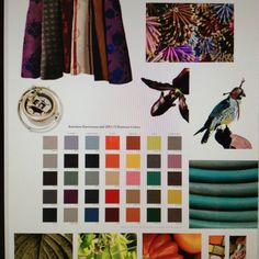 Forecasted 2014 Color Trends