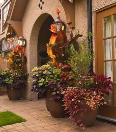 "Todd Holloway container garden design - ""The Bigger Picture"" (numbered) by tesselaarusa, via Flickr"