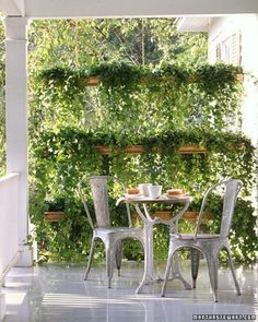 Rain gutters planted with hanging vines for apartment patio privacy. I want!