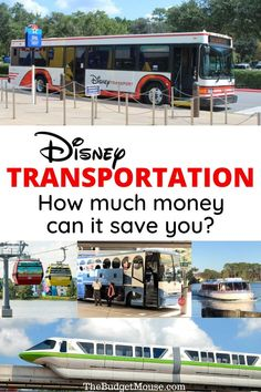 Disney Transportation: How Much Money Will It Save You? - The Budget Mouse Disney World Hotels, Walt Disney World Vacations, Disneyland Trip, Disney Cruise, Disney Trips, Hotel Disney, Disney Travel, Disney Fun, Disney Secrets