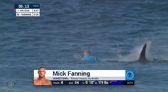 Papo de Esquinas: CT J-Bay 2015 - Tubarão ataca Mick na final