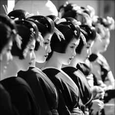 Geisha Japan, Geisha Art, Japanese Geisha, Japanese Kimono, Black And White People, Black N White Images, Black White, Japanese Blossom, Tokyo