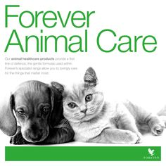 Share the goodness of Forever Living Products with your pets too! http://link.flp.social/OvGib7