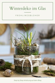 Benötigtes Material: Frühblüher im Topf ein größeres Glas / Windlicht Moos Euphorbia Spinosa Mohnkapseln Baumrinde Dekoband Diy Upcycling, Diy Hacks, Material, Place Cards, Diy Projects, Place Card Holders, Table Decorations, Mom, How To Make