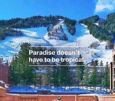 So true. © Wendy Klappe Alpenfreaks Facebook. Vail Colorado, Whistler, New Mexico, Skiing Quotes, Snowboarding Quotes, Skiing Memes, Vancouver, Ski Bunnies, Ski Racing