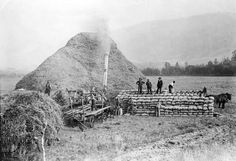 Threshing crew working at the Coldstream Ranch. To the right are the bags of grain harvested. Thanks to the Greater Vernon Museum & Archives for the photo! Pioneer Farms, Vernon Bc, Crop Protection, Back In Time, History Facts, British Columbia, Farming, Ranch, Museum