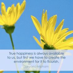 True happiness is always available to us, but first we have to create the environment for it to flourish ~ Sakyong Mipham