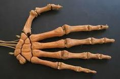 skeleton puppets tecnical control - Google Search