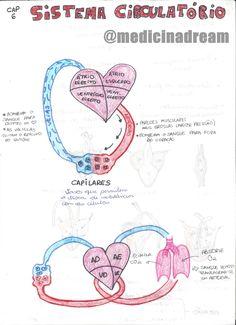// ♦ CORREÇÃO: No resumo de Eritroblastose fetal, o título está incorreto. Com um S a mais :/