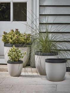 NEW Four Dipped Rim Planters - Soft Grey